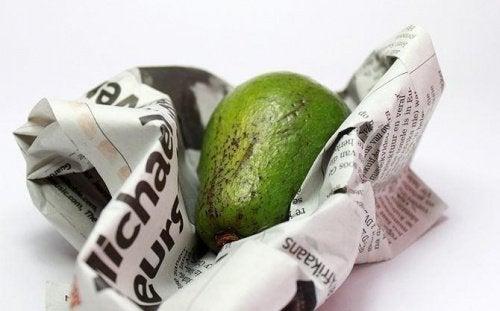 Авокадо във вестник