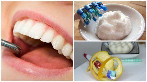 6 домашни средства за премахване на плаката на зъбите