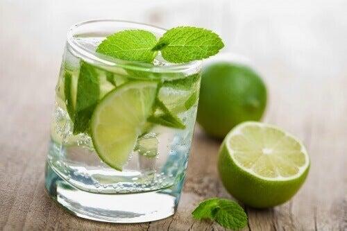 polzite-ot-pieneto-na-limonova-voda-predi-zakuska