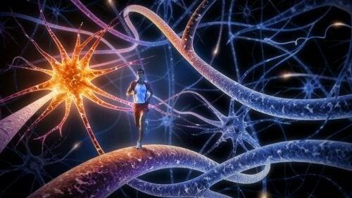 Най-добрите 8 упражнения за стимулиране на ума