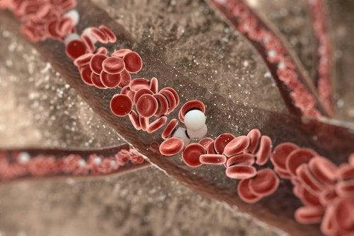 чесън под възглавницата, или чесън на гладно - гаранция за по-здрава имунна система