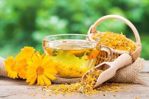 Да спрем болката от мигрената с чай от невен