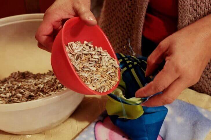 torbi-sus-semena