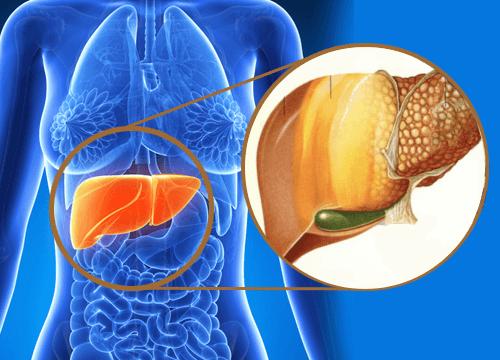 9 алармиращи сигнала, че са натрупани токсини в черния дроб