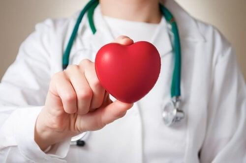 динята укрепва сърцето