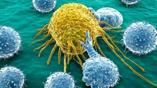 Наследствен ли е ракът?