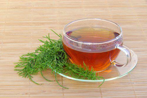 Чаят от хвощ е идеален за премахване на натрупалите се в тялото токсини