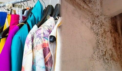 Дарет старите дрехи на хората в нужда