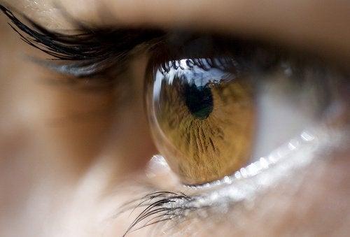 8 ефикасни лека при ечемик на окото