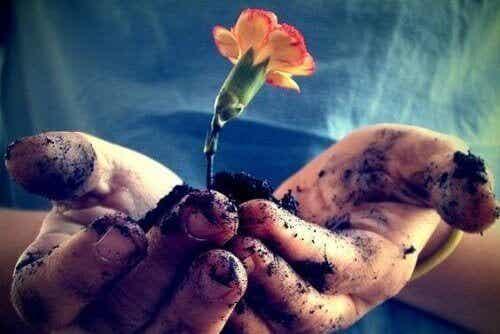 Любовта се нуждае от ежедневни грижи, за да разцъфне
