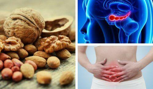 7 предимства на орехите, които вероятно не познавате