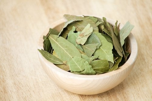 Направете си масло от дафинов лист