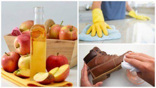 7 страхотни приложения на ябълковия оцет в домакинството