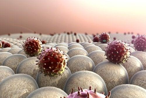 Последици от недостатъчния сън: отслабена имунна система