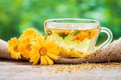 Чай от невен за лечение на фарингит