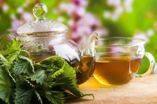 чай от коприва за облекчаване на крампите