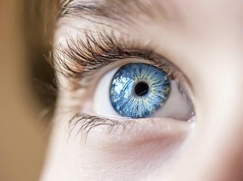 Ползите от алое верата за зрението