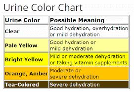 видове цветове на урината