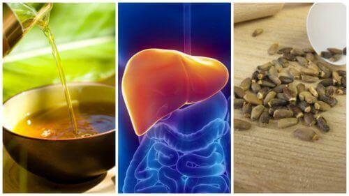 Излекувайте затлъстелия черен дроб с тези 6 алтернативни средства
