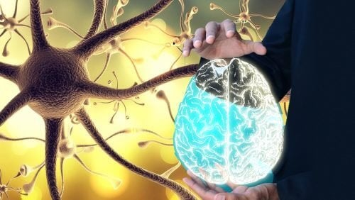 """Как да """"събудите"""" блуждаещия нерв за здравето на цялото тяло"""