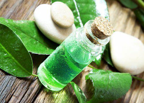етерично масло за дезинфекция на плодове и зеленчуци