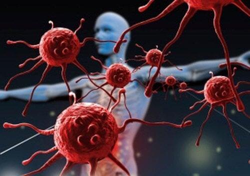 Подсилва имунната система.