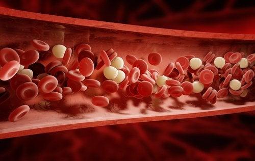 9 билки и подправки, пречистващи кръвта