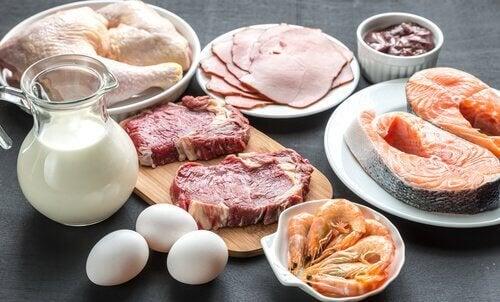 Включете повече протеини в диетата си за изгаряне на мазнините