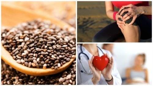 9 удивителни ползи на семената от чиа
