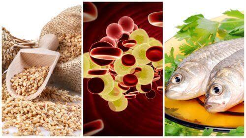 7 храни, контролиращи нивата на холестерол в организма