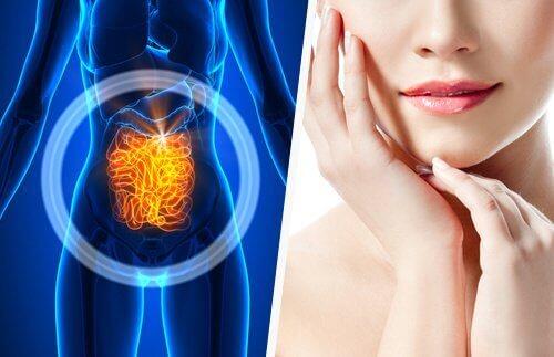 Проблемите на кожата и връзката им с чревния тракт