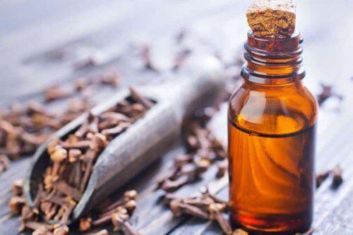 маслото от карамфил намалява инфекцията от подутите венци