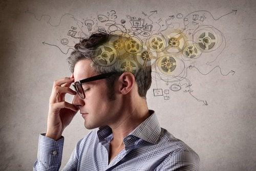 функция на вашия мозък