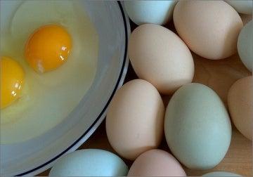 Органични яйца