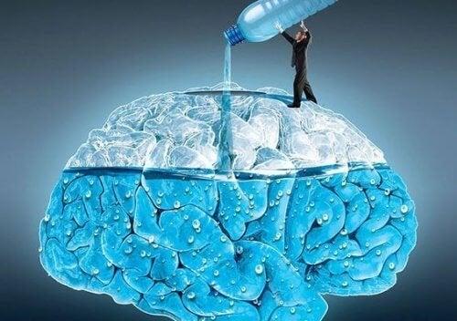 5 невероятни начини как пиенето на вода засяга мозъка ви