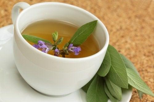 Чай от салвия за лечение на възпаленото гърло