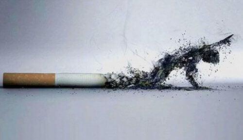 5 начина за прекратяване на пушенето и подобряване на външния вид