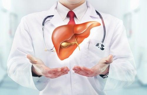 консумацията на гравиола подпомага черния дроб