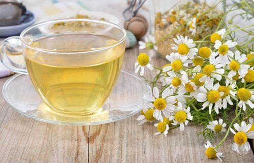 Чай от лайка при храносмилателни проблеми