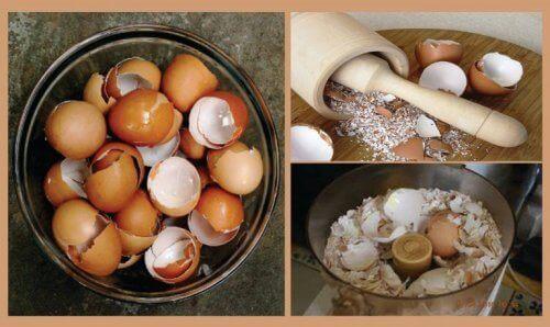6 интересни натурални средства с черупки от яйца