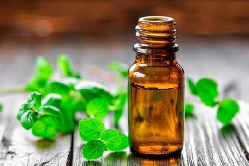 масло от мента за лечение на артрит артрит