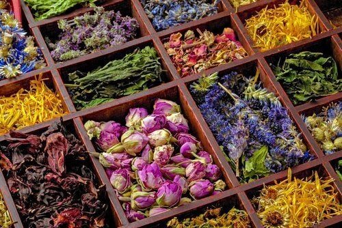 Натурални билки за лечение на гъбичните инфекции