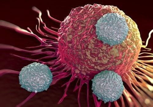 Алкалните храни унищожават раковите клетки