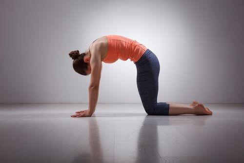 разтягане на гърба за няколко минути