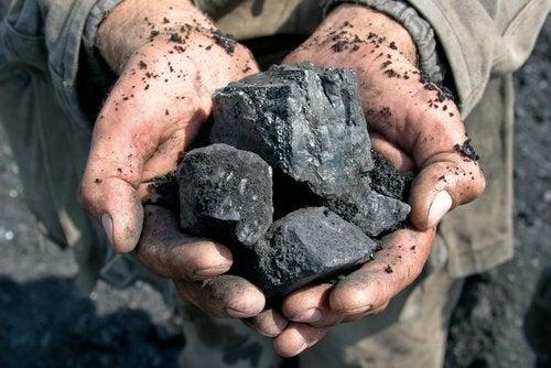 7 прекрасни начинa да използвате дървените въглища у дома