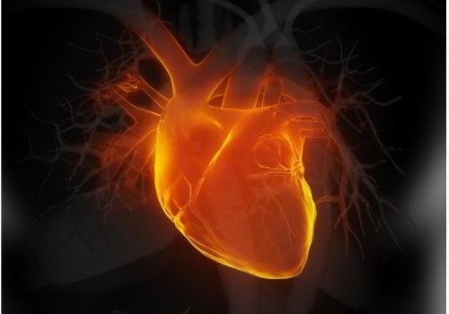 Внимавайте за тези 6 ранни признака на сърдечната недостатъчност