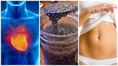 8 причини да включите семена от чиа в диетата си