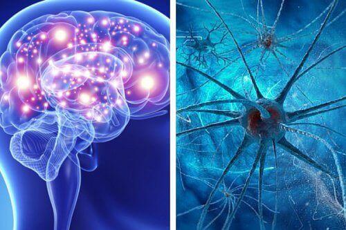5 увреждащи ума навици