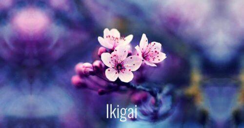 7 красиви японски думи, които стимулират личностното израстване