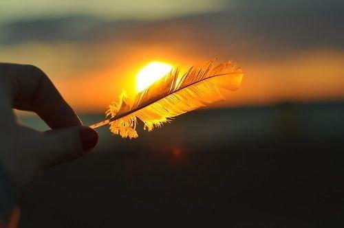 за да постигнете емоционално равновесие, дайте прошка и продължете напред